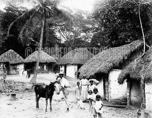 Country Village, Jamaica, 1890. Photo by A. Duperly & Son