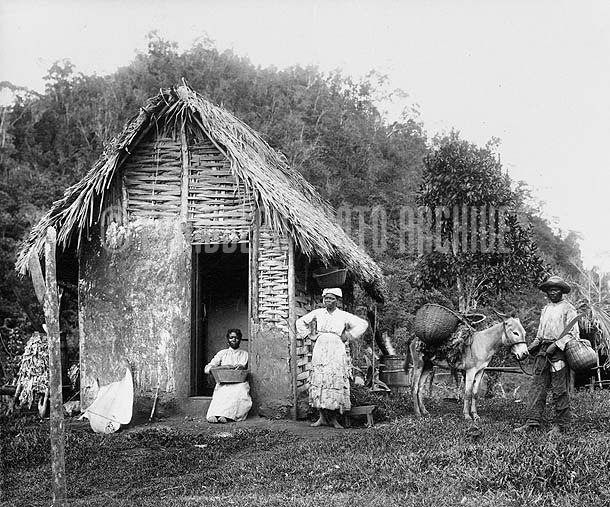 Country Hut, Jamaica, 1890