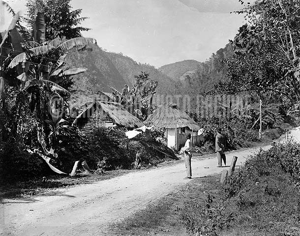 Road to Castleton, Jamaica, 1890